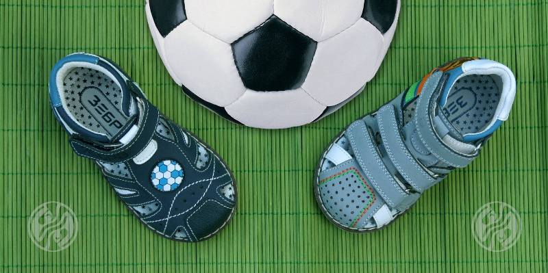 Зебра - обувь для детей в Новосибирске