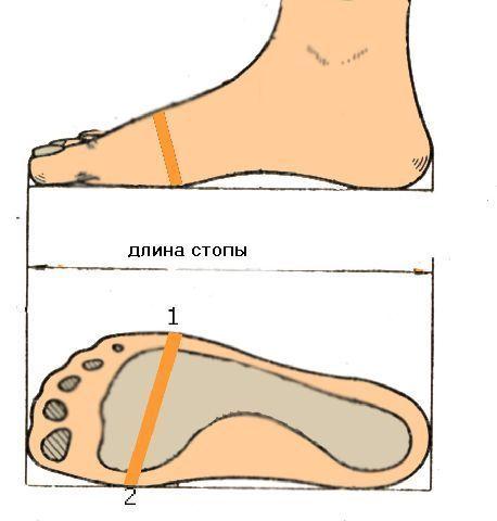 Полнота детской обуви